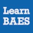 birmingham adult education service profile